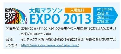 Expo2013_2